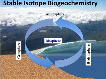Earth 124I/224I: Stable Isotope Biogeochemistry